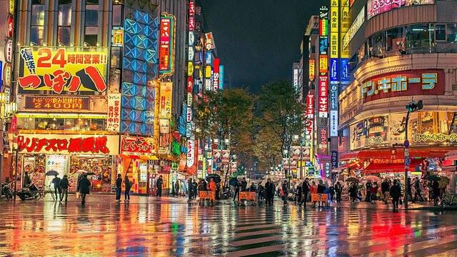 HÀ NỘI – TOKYO – NÚI PHÚ SỸ – IBARAKI – CÁNH ĐỒNG CỎ KOCHIA – HÀ NỘI (4N 3D)